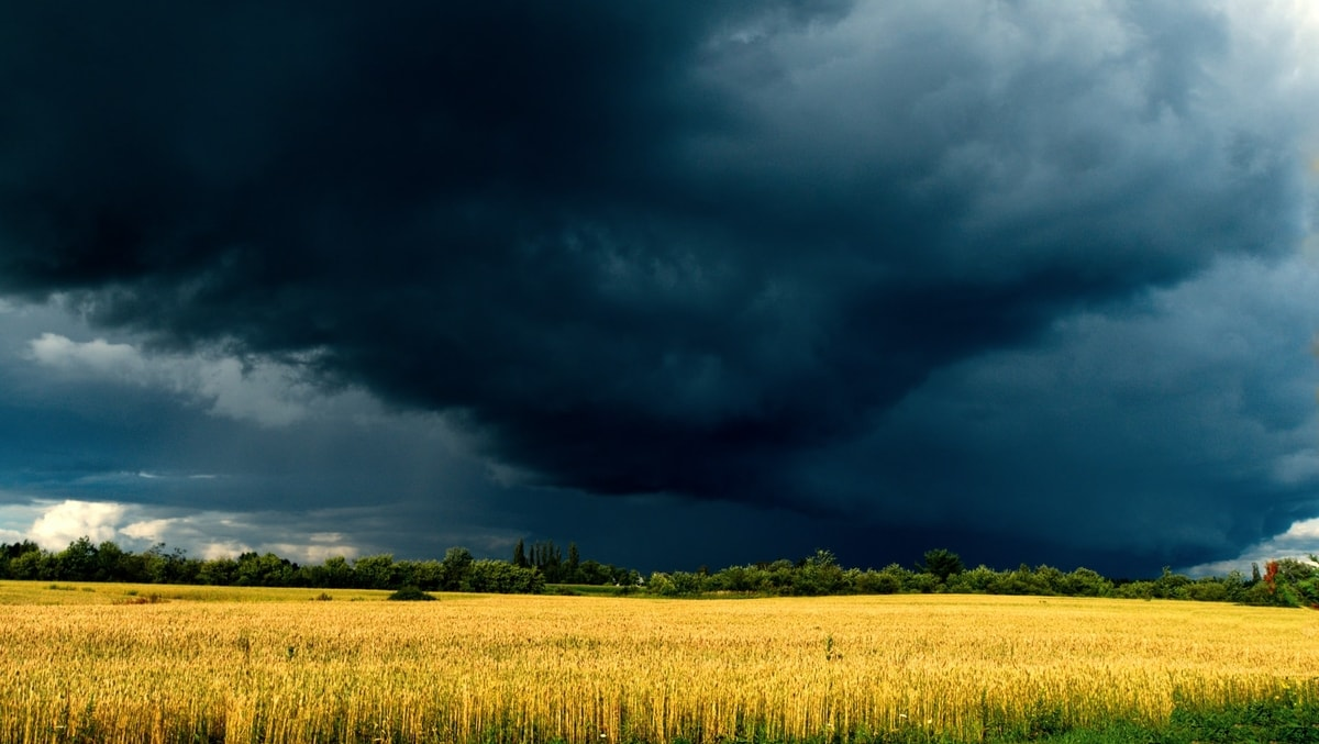 6 Ways To Protect Your Home From Natural Disasters